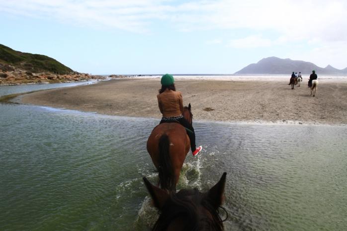Horse riding along the Noordhoek wetlands